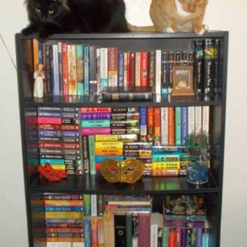 bookcase.pg