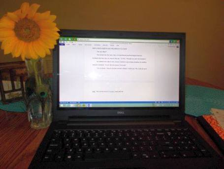 When I'm using my laptop, I like to sit at my dining room table. This is a sunflower from my garden. :)